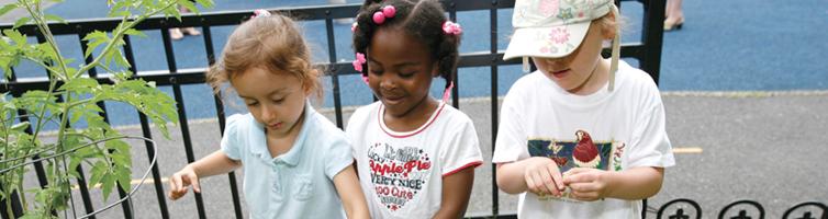 Diane Lindner-Goldberg Child Care Institute