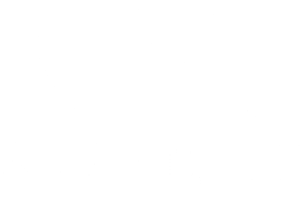 Silverite Construction logo