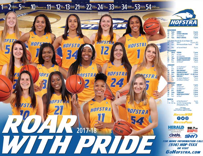 Women's Basketball Poster