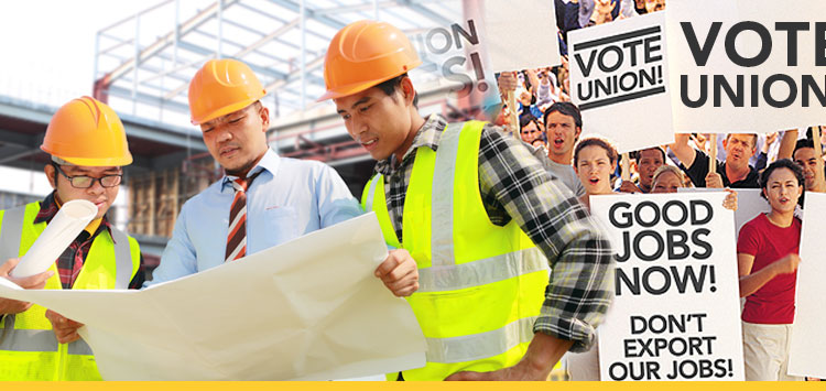 labor studies hclas hofstra university new york