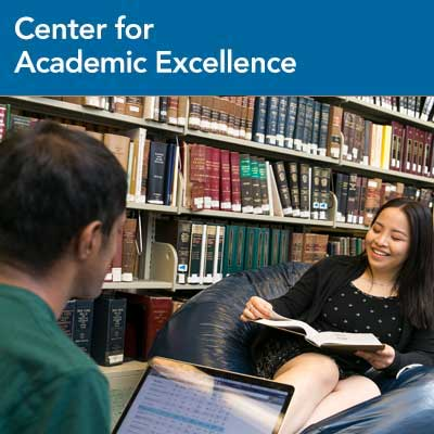 Center for Academic Excellence